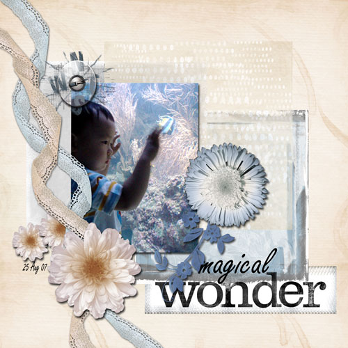 magical-wonder-web.jpg